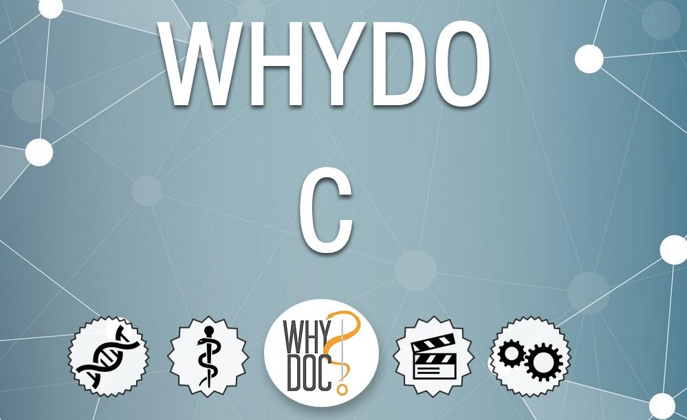 Page d'accueil du site Whydoc